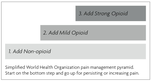 Three-step Pain Management Pyramid