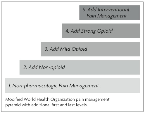 Five-step Pain Management Pyramid
